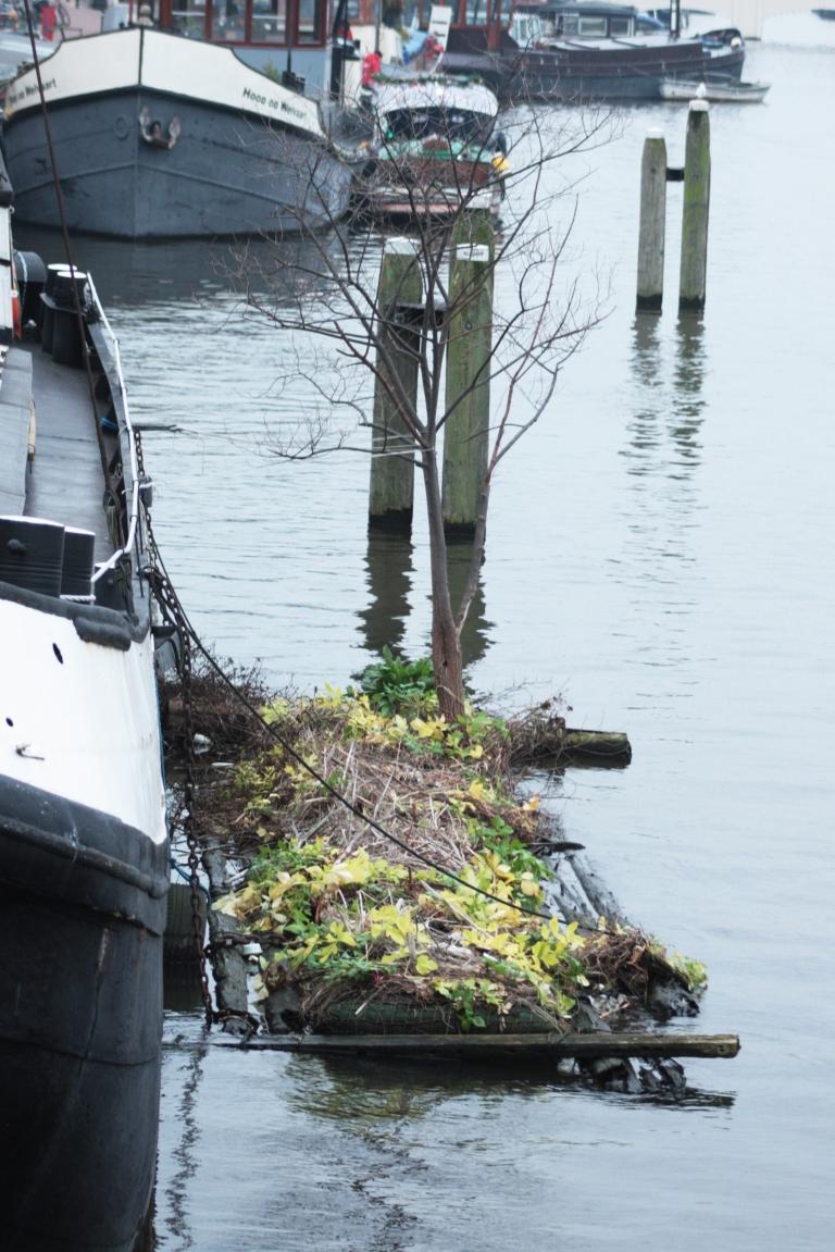 boat garden amsterdam